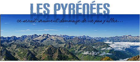 pyreneesété2013